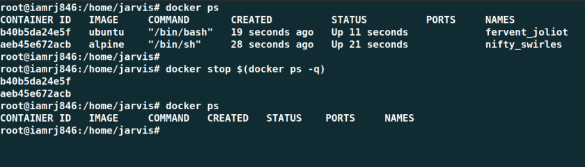 Stop all Docker Containers