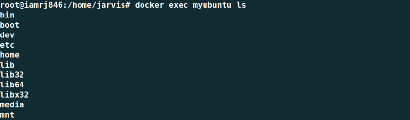 Docker exec command