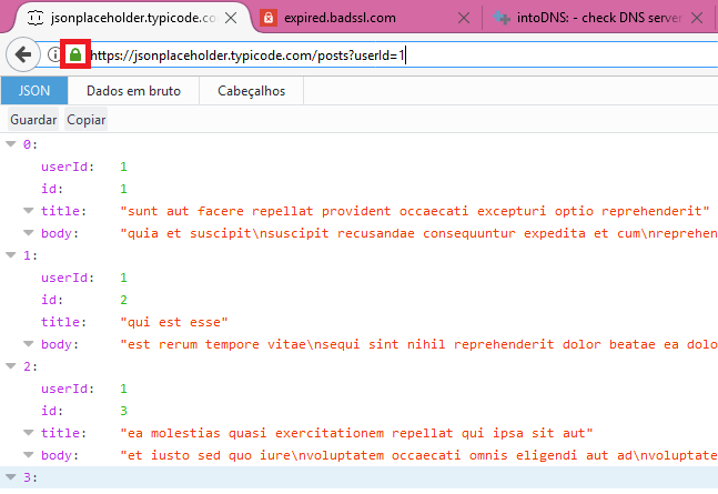 Firefox check certificate chain.png
