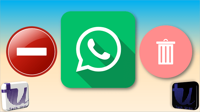 WhatsApp Lets Users Delete Messages for Everyone Even After 7 Minutes a bug