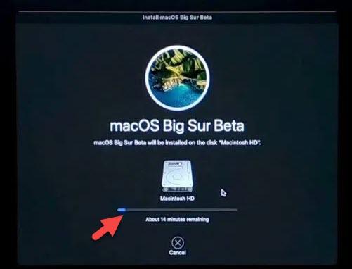 dual boot windows 10 and macOS big Sur
