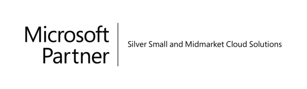 Techvera Microsoft silver partner logo