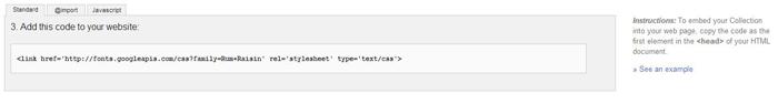 google-fonts-use-code-on-website