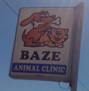 baze-animal-clicnic-bad-logo-design