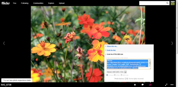 how-to-embed-flikr-images-in-your-blog,-website-article