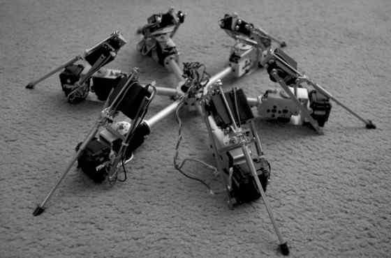 Робот паук с искусственным интеллектом