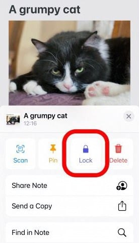select the 'Lock' and set the password
