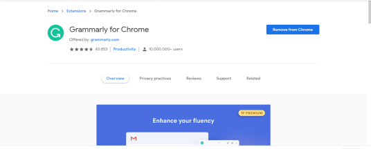 top chrome extensions (Grammarly)