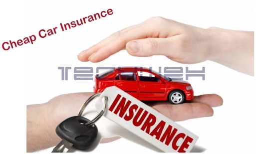 Looking for cheap car insurance? check this out
