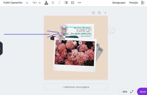Personalizando imagens no Canva