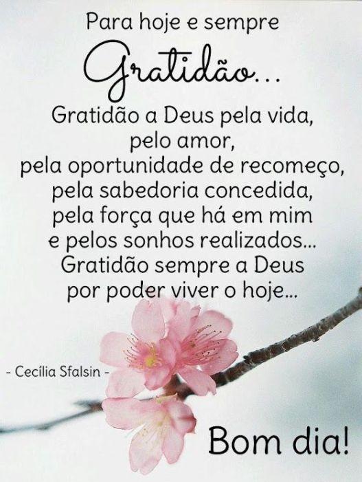 Bom dia, gratidão a DEUS pela vida