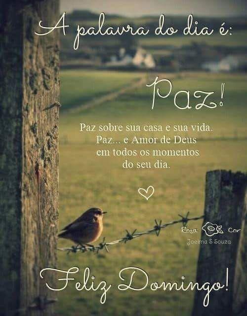 Paz sobre sua casa e sua vida. Paz..e amor de Deus em todos os momentos de seu dia.