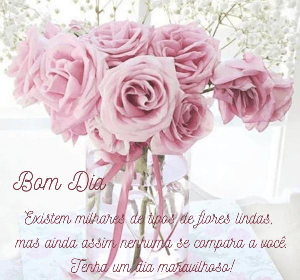 Frases de bom dia com flores