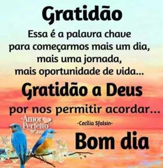 Gratidão é a palavra chave
