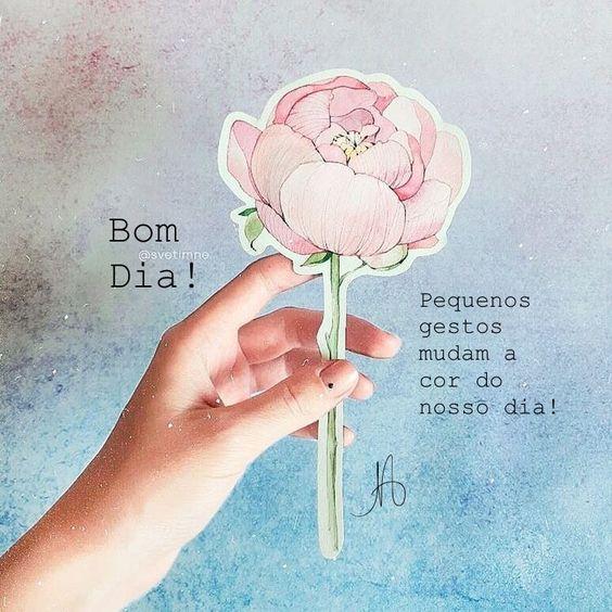 Bom dia com rosa