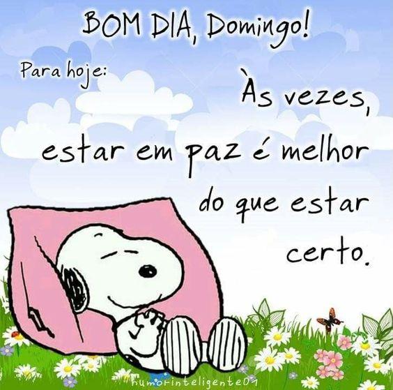 Snoopy Bom dia Domingo em paz