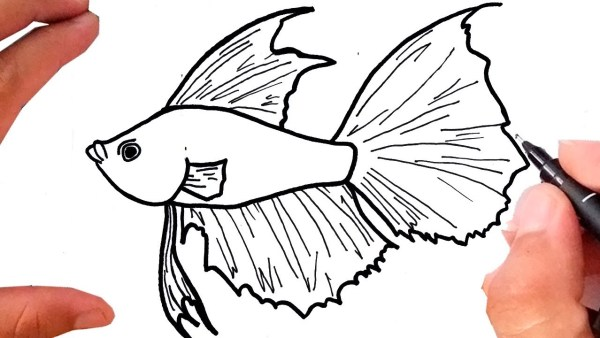 Desenho do peixinho.