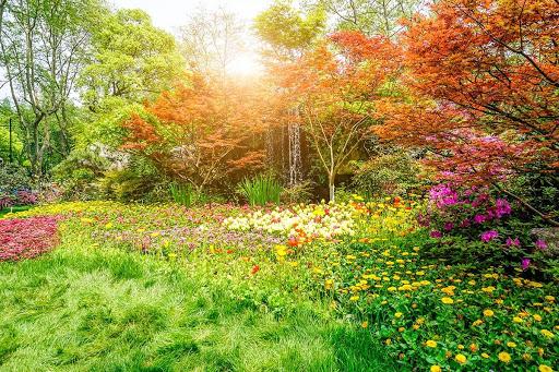 Primavera estação linda.
