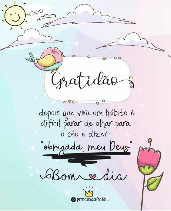 Gratidão bom dia