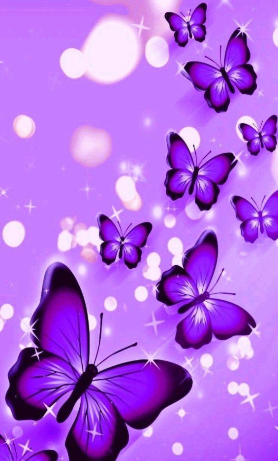 Papel de parede para celular de borboleta