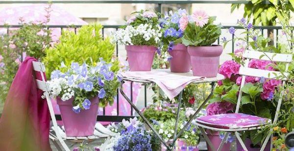 bela decoração de jardim
