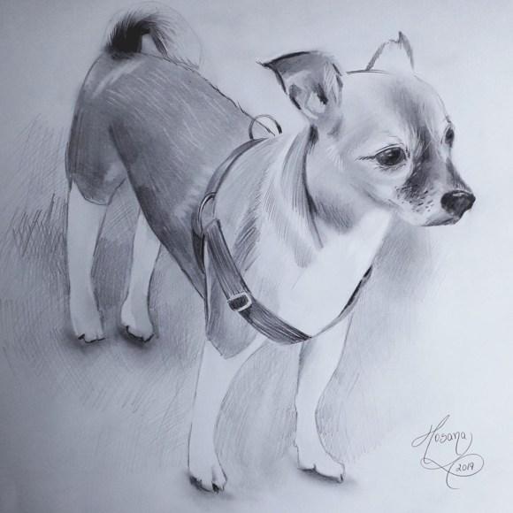 Desenho realista de um cachorro