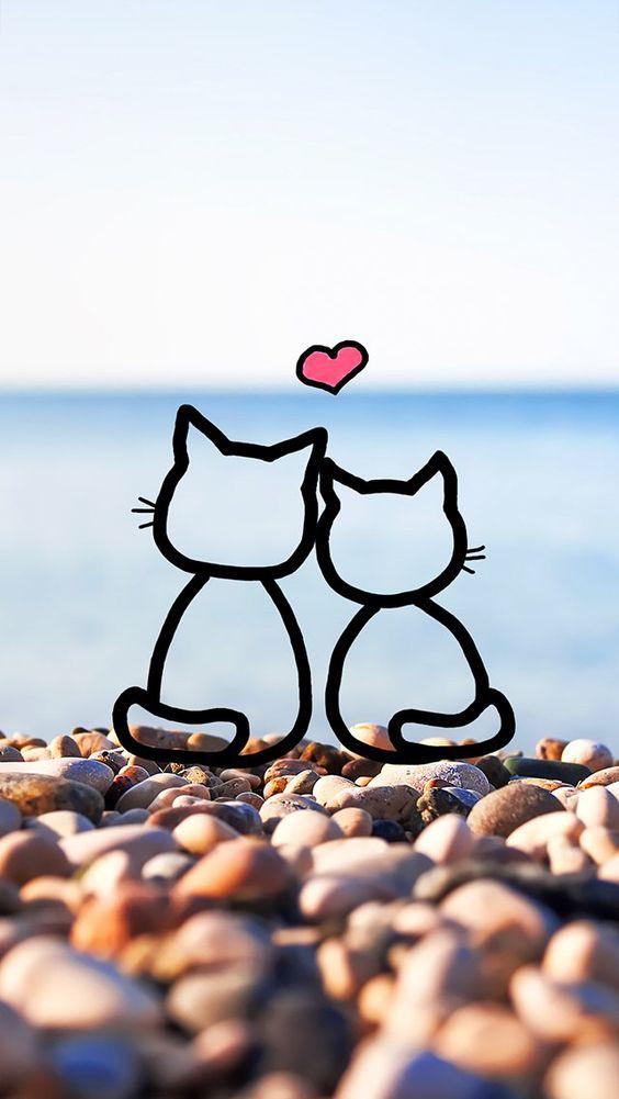 papel de parede gatinhos