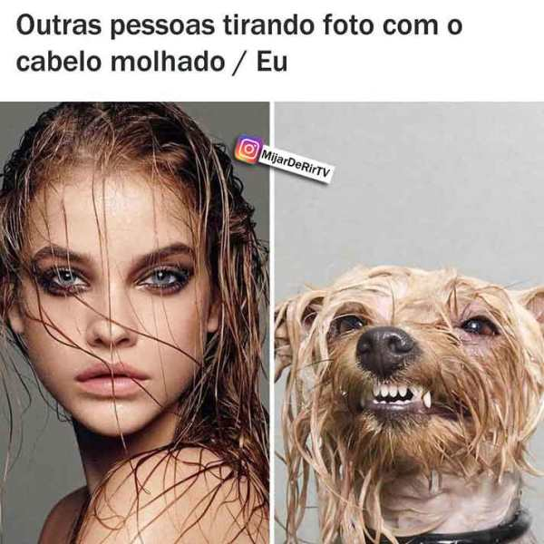 rindo do meme para whatsapp