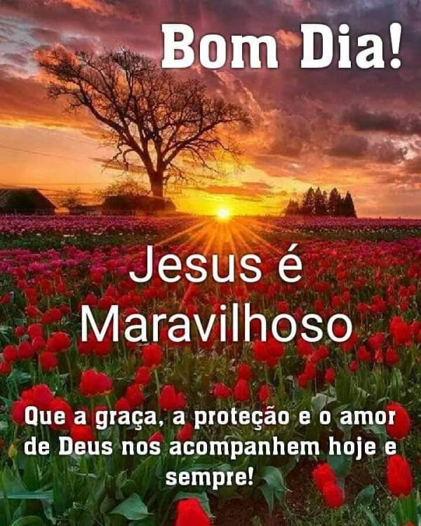 bom dia maravilhoso com Jesus