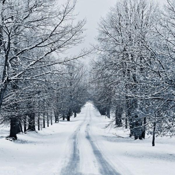 Estação do inverno.