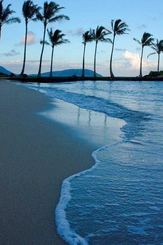 wallpaper água da praia