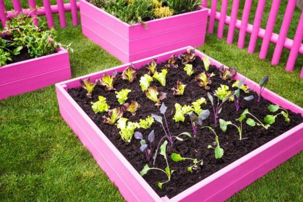 artesanato para horta