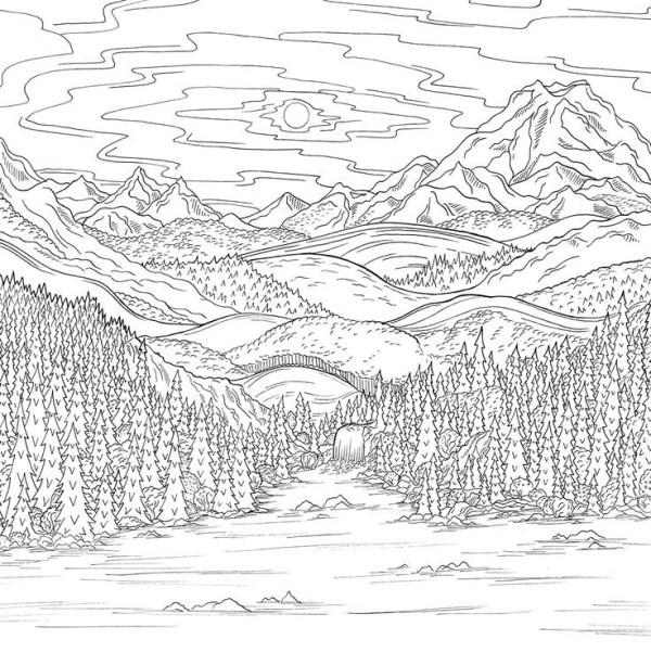 paisagem da natureza bosque