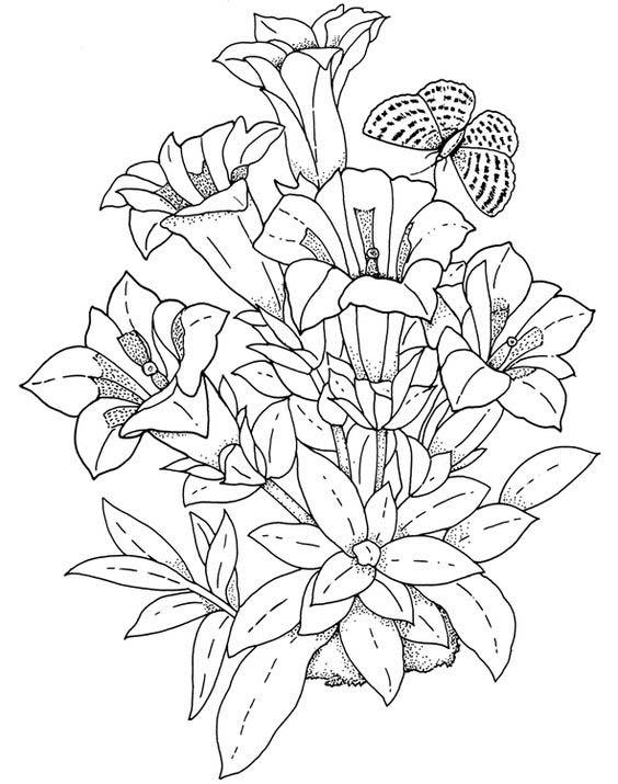 conjunto desenho de flores