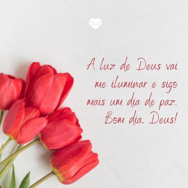 bom dia com Deus  iluminado