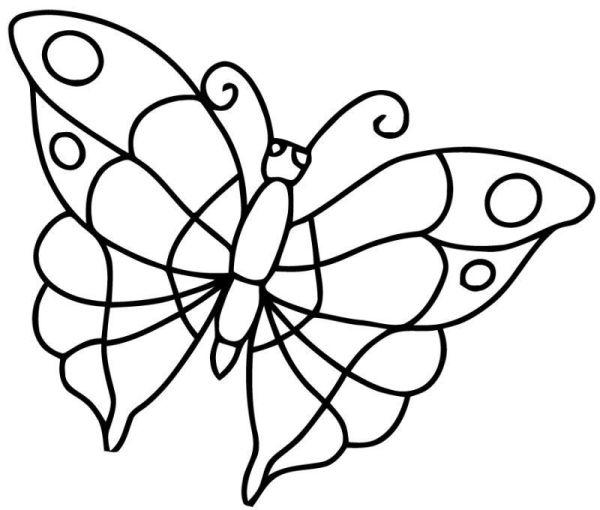 Colorindo borboletas