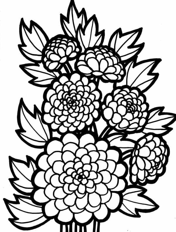 desenho de flores lindinhas