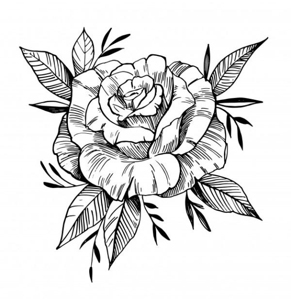 desenho de flores parabéns
