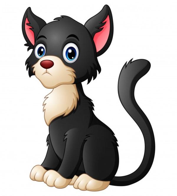 Imagem de gato preto