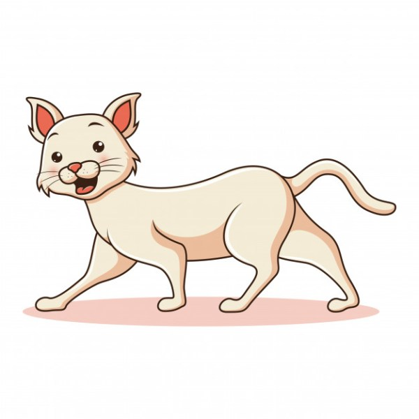 gato desenho animado.