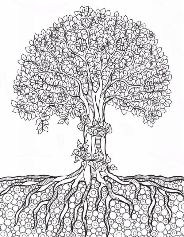 paisagem da natureza árvore
