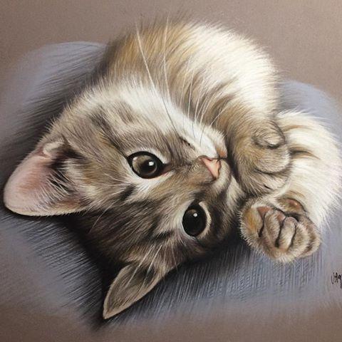 Desenho fofo de gato