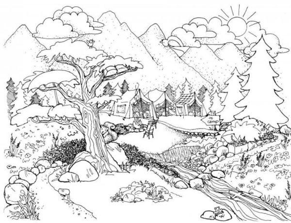 vista paisagem da natureza