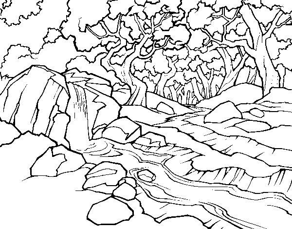 para colorir paisagem da natureza