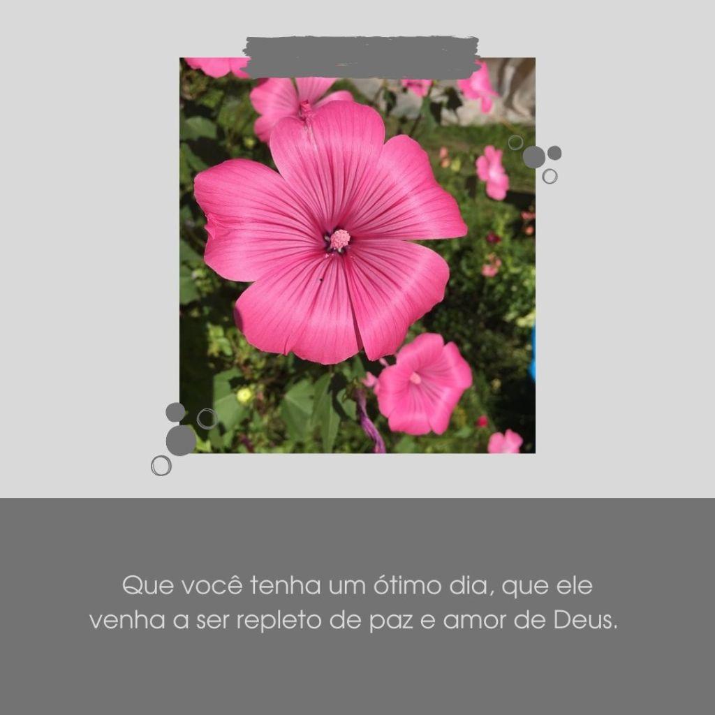 tenha um bom dia com Deus