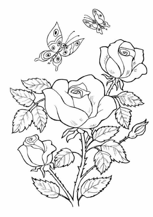 desenho de flores borboletas