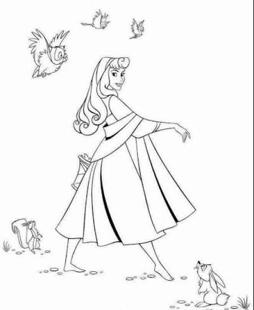 Imagem de princesas lindas para pintar