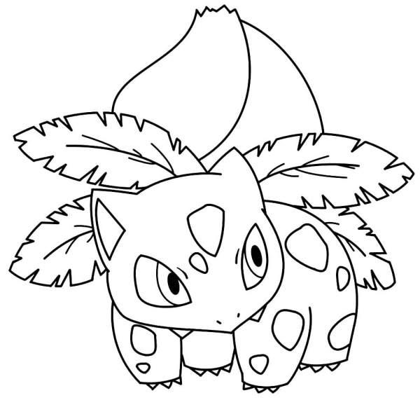 Pokémon o preferido da criançada