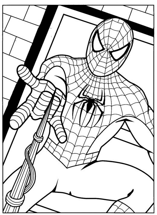 belo Desenhos do Homem aranha