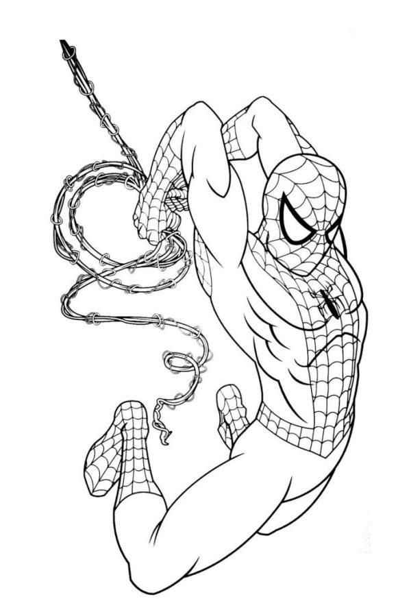 bonito Desenhos do Homem aranha